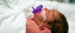 Prematurity Awareness Day
